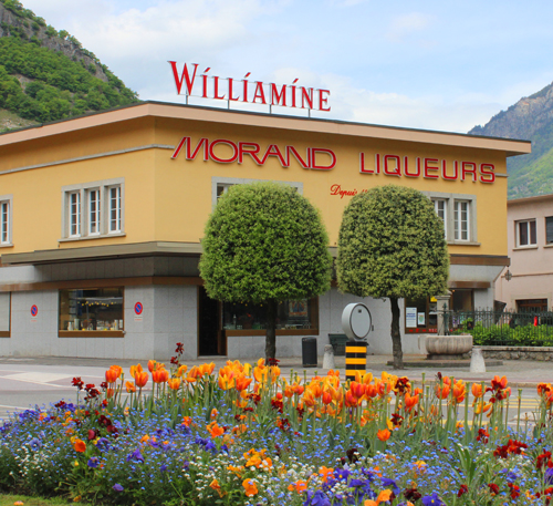Die Distillerie MORAND - La Williamine